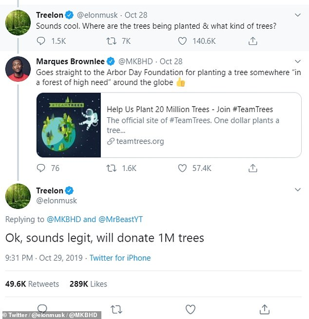 After prompting from another Twitter user yesterday, Mr Musk asked where the trees were being location and what species the campaign was planting