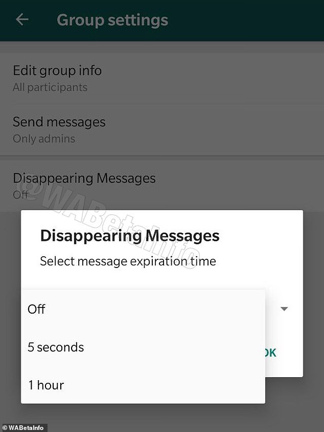 Leaked screenshots from within WhatsApp show the ability to set timers for messages, however users only have two choices at the moment ¿ five minutes or one hour