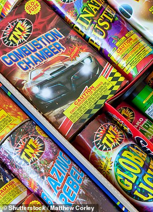 Gruesome photos would 'suck the fun' out of fireworks, the IEA said