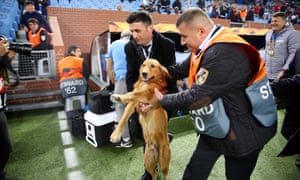 A dog is being taken out of the area by officials after it invades the pitch ahead of the Europa League match between Trabzonspor and Getafe in Trabzon, Turkey.