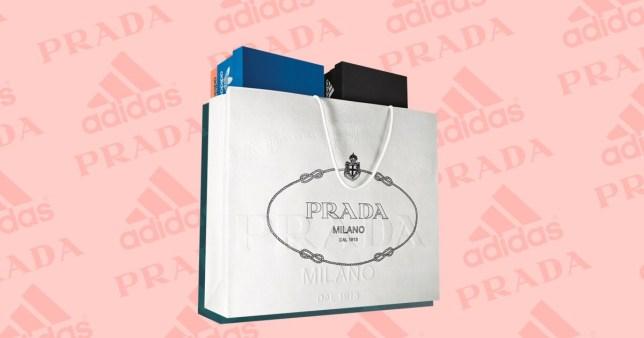 adidas shoe boxes inside a prada shopping bag