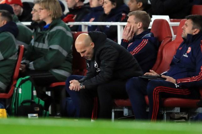 Freddie Ljungberg reacts to Arsenal's defeat to Brighton