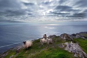 Sheep's Head Peninsula Ireland's Atlantic Seashore