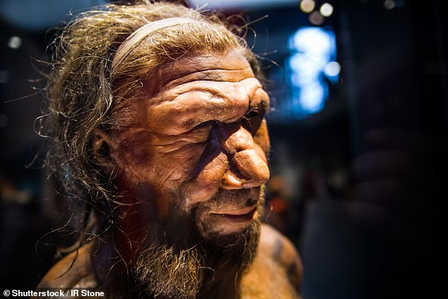 Selective mating practices among the small number of Neanderthals that did develop some of the BAZ1B gene mutations could have contributed to the eventual evolution of homo sapiens with their distinctively expressive faces