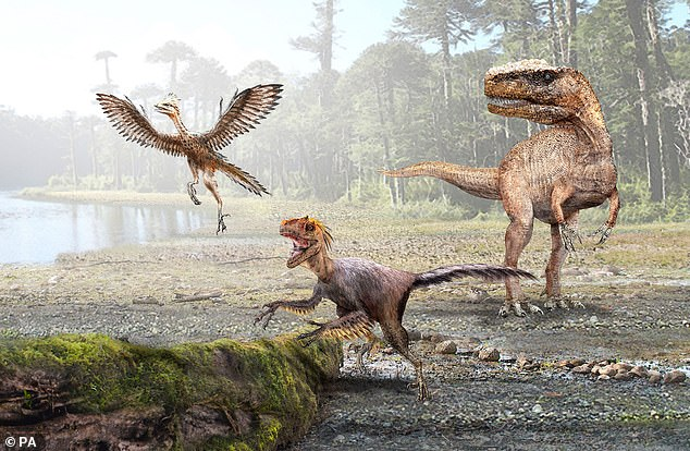Dinosaurs shrank while adapting to have a higher metabolism from the early Jurassic period, around 180 million years ago.The University of Chile study says the theropods dinosaur population rose 30-fold as they profited from growing smaller as endothermy evolved