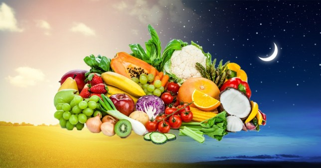 What is the circadian diet?