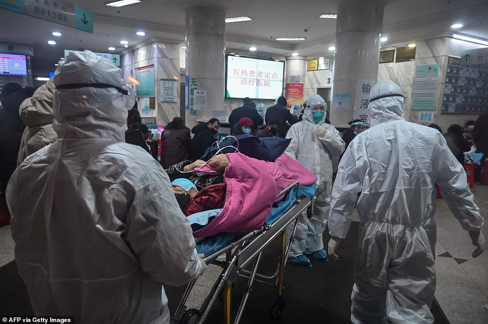 Several drugs are being tried to treat people with coronavirus but there is no evidence of their efficacy Pictured: Medical staff wearing protective clothing to protect against a previously unknown coronavirus arrive with a patient at the Wuhan Red Cross Hospital