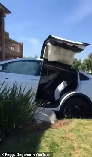 Three years ago, news spread of a brand-new Tesla Model X SUV when it suddenly accelerated at 'maximum speed' by itself, jumped a curb and slammed into the side of a shopping mall