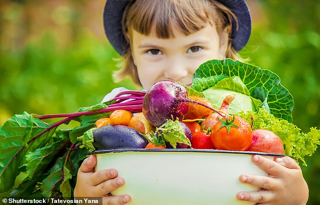 A study of iron levels in the brains of 1,500 people aged eight to 24 concluded that vegetables are vital for brain development