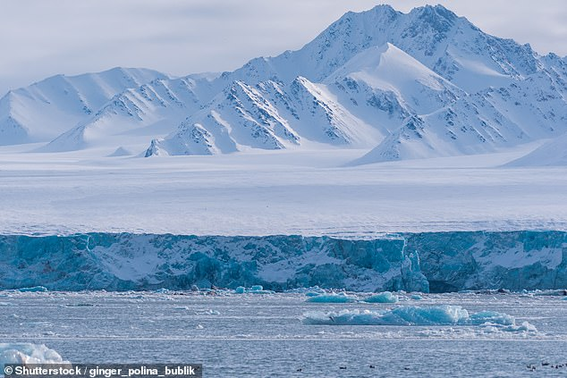 The Arctic is normally a vast and barren expanse of frozen land (pictured) but higher temperatures are allowing foliage to thrive