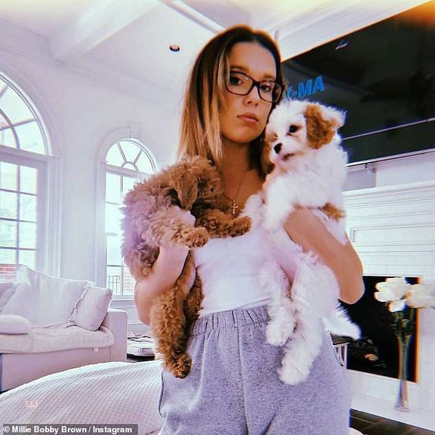 Puppy party: Millie Bobby Brown and her dogs offered some relief to young fans on Instagram by suggesting self-quarantining is the 'perfect time to be with our families and fluffy friends'