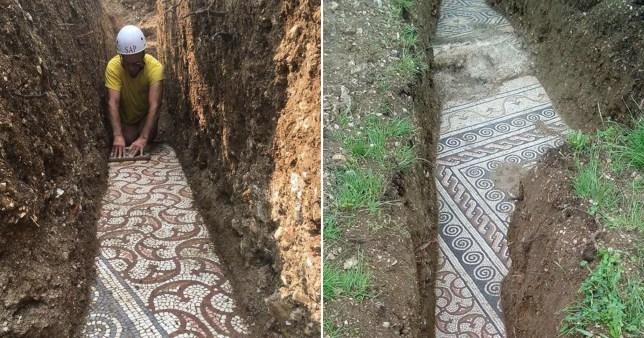 Roman mosaic found under a vineyard in Italy