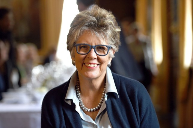 File photo dated 14/2/2017 of Prue Leith who has said the way she brought up her children would not be acceptable today. PA Photo. Issue date: Tuesday March 31, 2020. The Great British Bake Off judge, 80, admitted that she would not class herself as either a very good mother or grandmother. See PA story SHOWBIZ Leith. Photo credit should read: Kirsty O'Connor/PA Wire