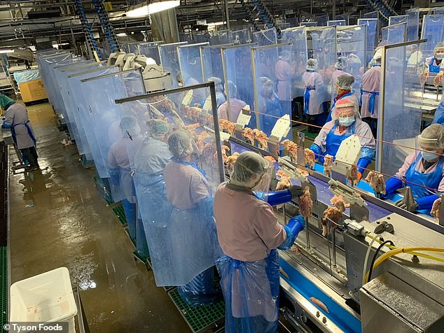 At least 87% of meat and poultry processing facility workers infected with coronavirus are minorities. Pictured: Protective barriers between Tyson Foods workers at the company's Springdale, Arkansas plant, April 24, 2020