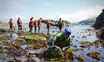 Cornwall-castaways foraging on beACH