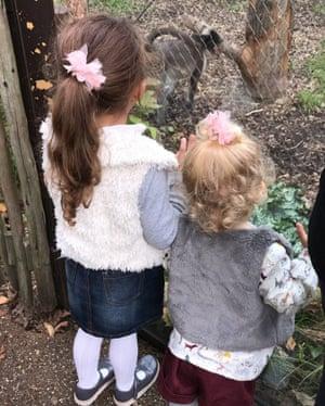 Dee Ansah's two grandchildren observe monkeys at a zoo.