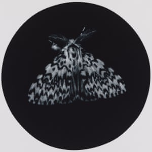 Black Arches. A print from Sarah Gillespie's exhibition.