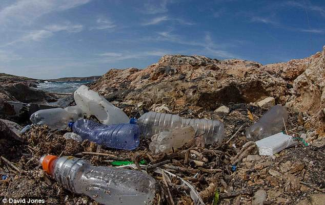 British scientists have come up with a novel way of improving the recycling of the most common type of plastic waste using enzymes