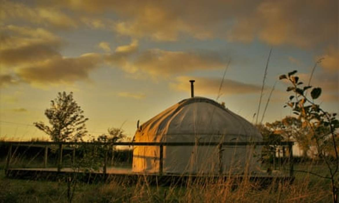Ivy Grange Farm view of yurt and evening sky