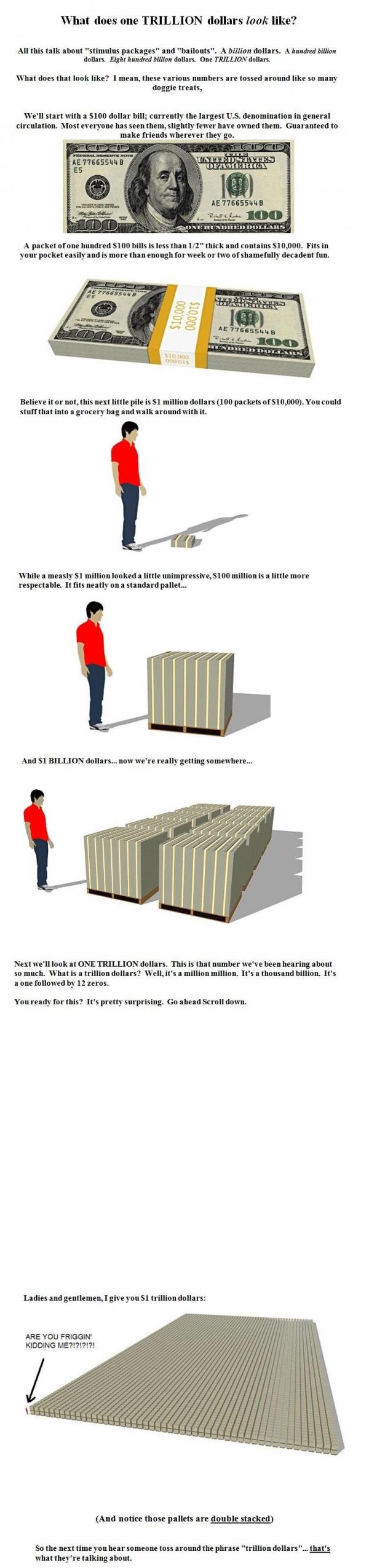 Trillion Dollar Infographic