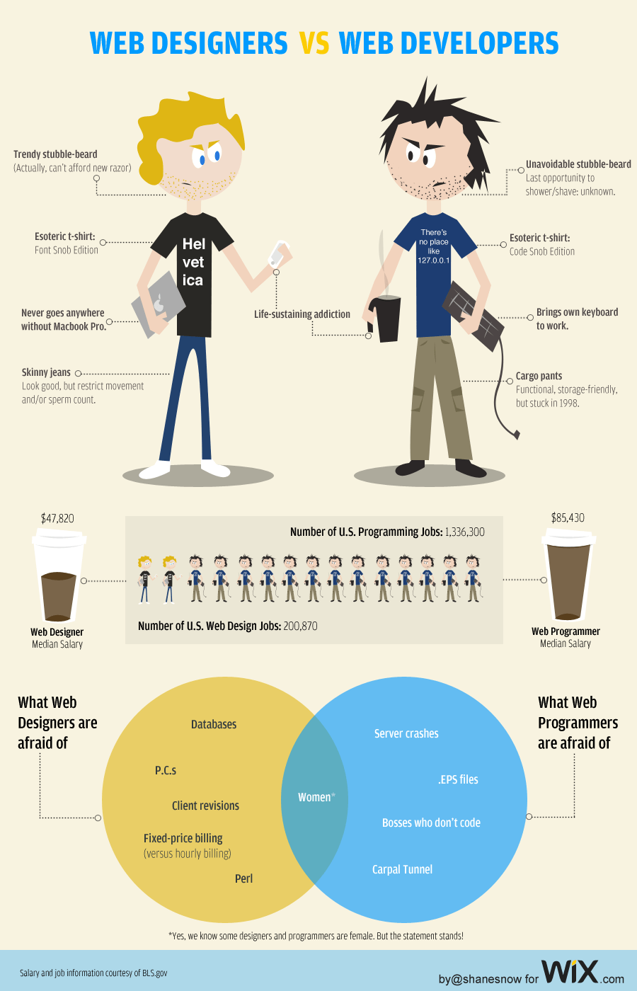 Web Developers vs Web Designers