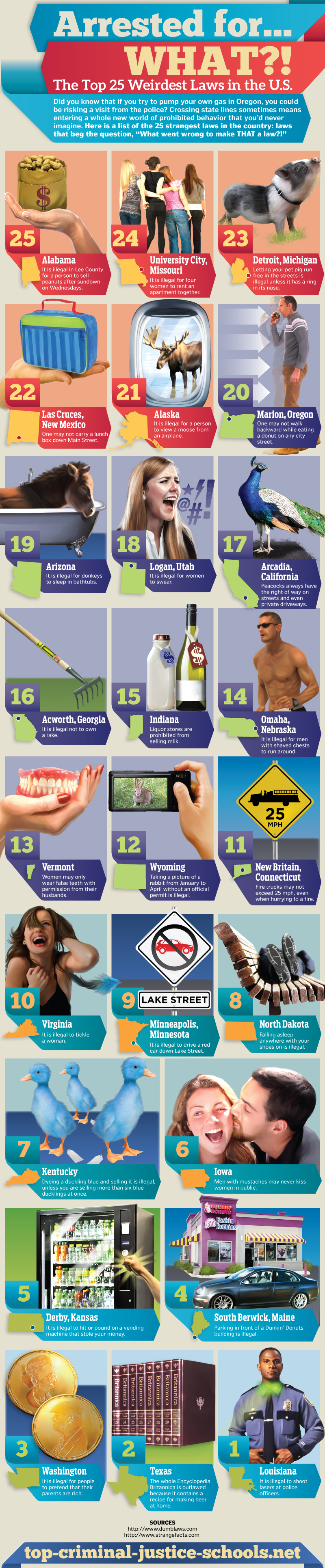 Top 25 Weirdest Laws in the U.S.