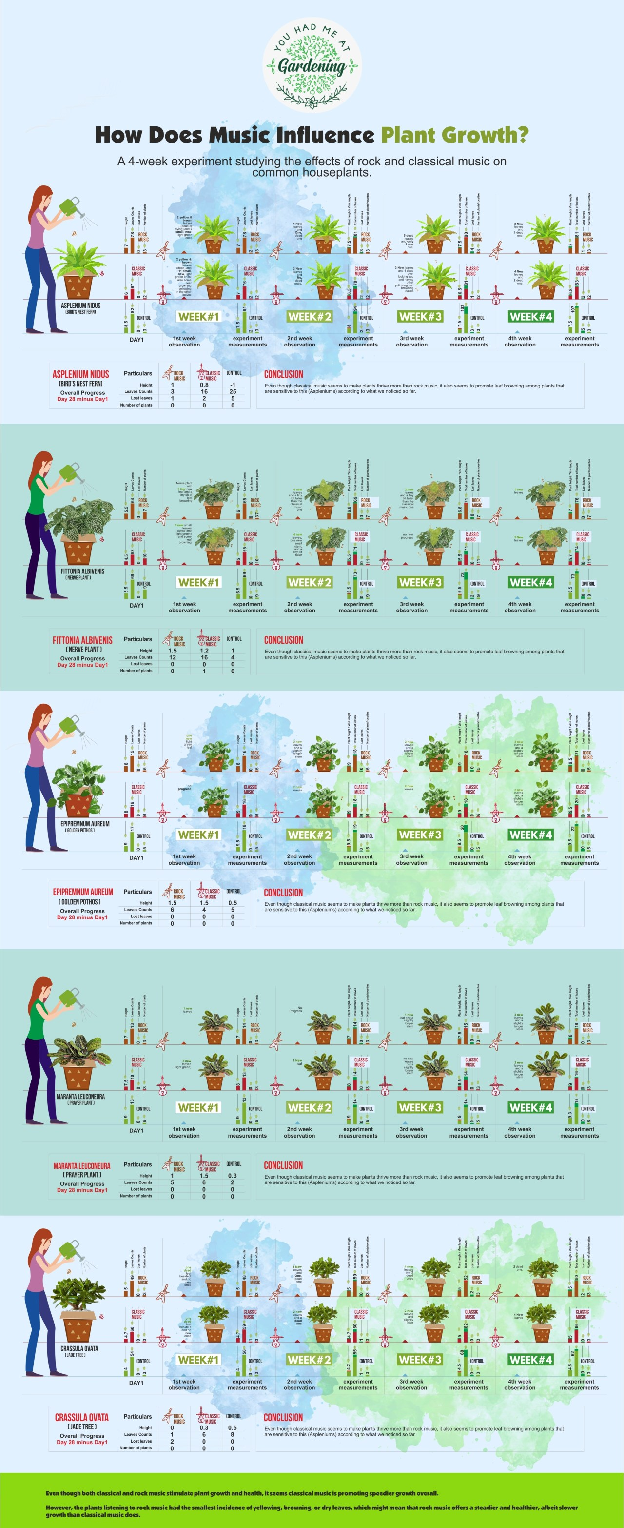 How Does Music Influence Plant Growth?