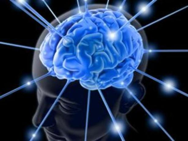 cervellodalweb-kHqD--1280x960@Produzione