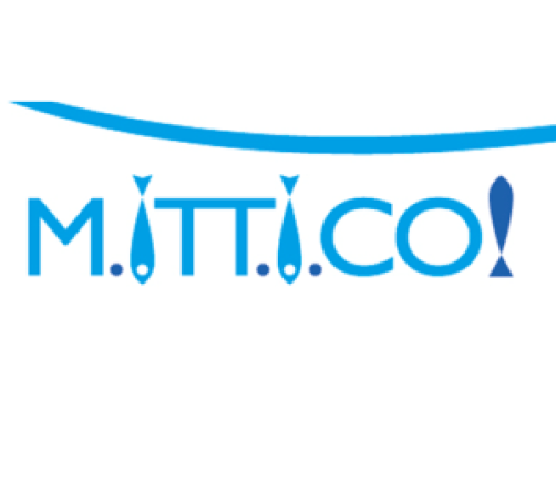 mit-e1430397031195