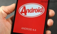 Official Android 4.4 KitKat Factory Images for Nexus : Nexus 5 Android 4 4 Kitkat Logo 01