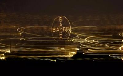 Bayer: Απολύει 12.000 εργαζομένους λόγω εξαγοράς της Monsanto! | Newsit.gr