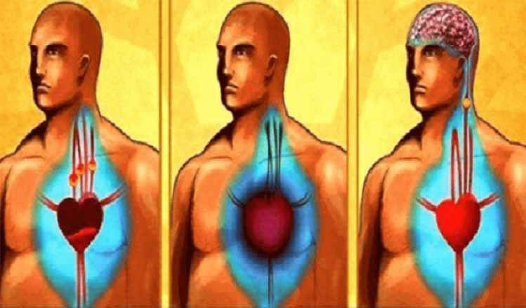 clean-your-arteries-and-prevent-heart-attack-and-stroke-only-with-one-glass-of-this-powerful-drink