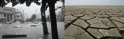 Abnormal Climatic Patterns Worry Kashmir