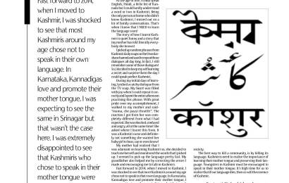 How I learnt to speak Kashmiri