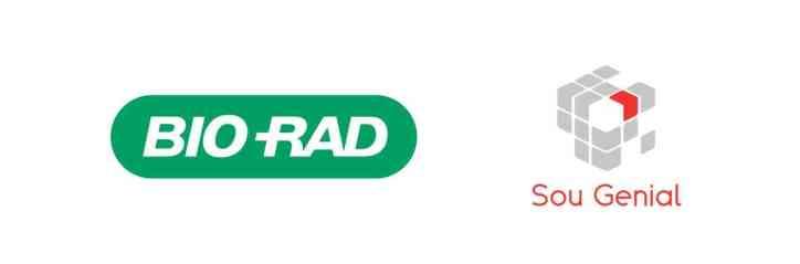 Logotipo Informe de Mercado