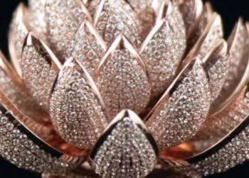 भारतीय मूल दंपति की असामान्य बच्ची को विमान में ले जाने से कैप्टन ने किया इंकार, सोशल मीडिया में हंगामा खड़ा