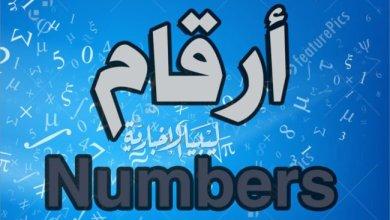أرقام العدد