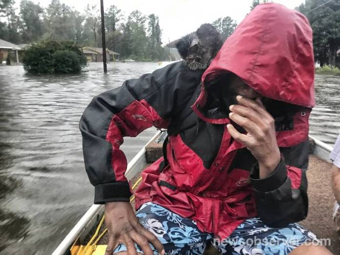Robert Simmons Jr. and his kitten, Survivor, are rescued from floodwaters in New Bern, NC, after Hurricane Florence dumped several inches of rain in the area overnight, Sept. 14, 2018. Hundreds were rescued from eastern North Carolina in the wake of the slow-moving storm.