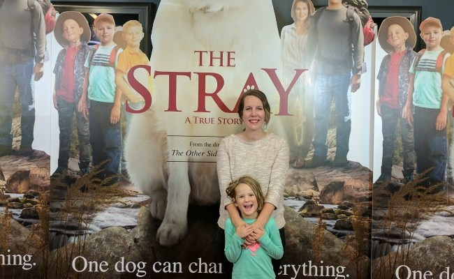 The Stray Review: A Movie that Tries Too Hard to Hit the Heart