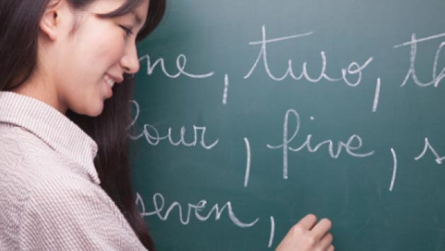 Language teaching and translations are business opportunities