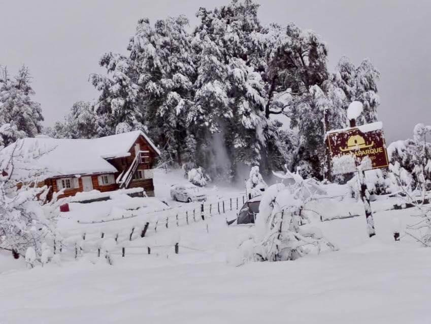 Nahuel Huapi National Park under snow. (Photo: Facebook Nahuel Huapi National Park)