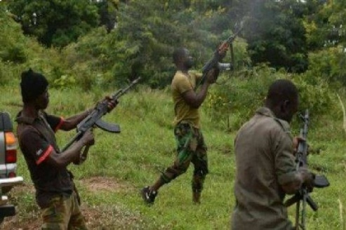 Bandits Strike In Zamfara  Again,  Abduct 60, Set  Houses Ablaze