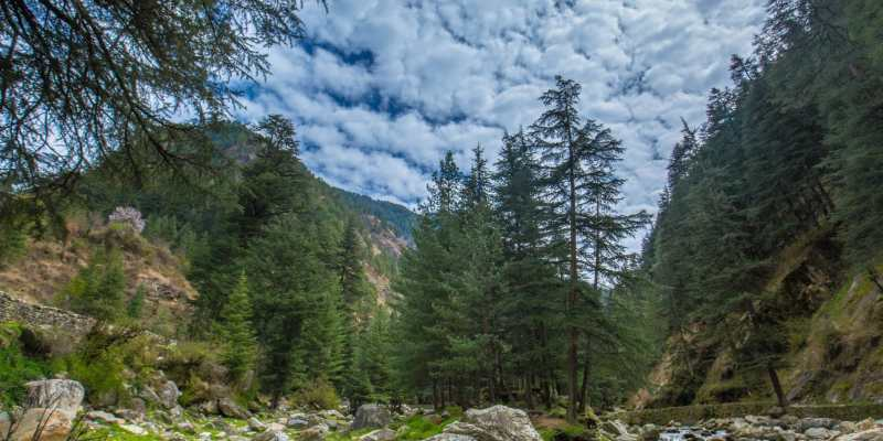 Parvati_Valley