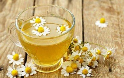 Bağışıklığı Güçlendiren Doğal Bitki Çayları Nelerdir? Nasıl Tüketilmelidir?