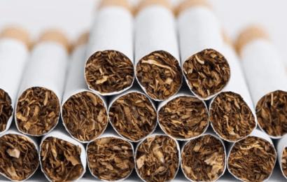 Cumhuriyet Tarihin En Yüksek Tütün Tüketimi: Kişi Başı 1400 Sigara İçtik