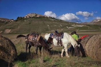На горе – деревня Кастелуччо ди Норча