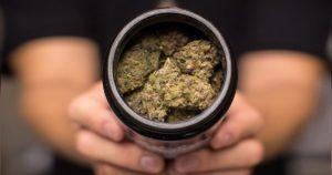 Anniversaire de la légalisation du cannabis au Canada