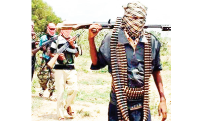 22 killed in fresh Zamfara attack