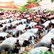 Appreciate God, humans for good gestures, clerics task Muslims