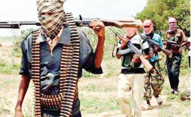 Gunmen kidnap 2 expatriates, 6 Nigerian workers in Niger